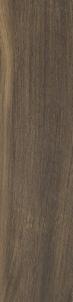16*65.5 MALOE BROWN MAT, ak. m. tile