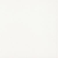 19.8*19.8 INWEST BIALY/WHITE MAT, akmens masės plytelė Akmens masės apdailos plytelės