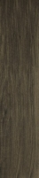 21.5*98.5 HASEL OCHRA, akmens masės tile