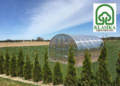 Arched šiltnamis KLASIKA 36 m2 (3x12 m) su 4 mm. polikarbonato danga Greenhouses