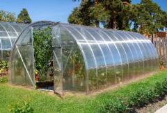 Arched polikarbonatinis surenkamas šiltnamis EKO 2x4 Greenhouses