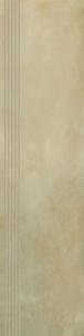 29.8*119.8 TIGUA BEIGE STOP MAT, ak. m. pakopa