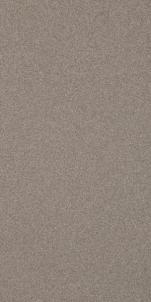 29.8*59.8 SOLID BROWN MAT, ak. m. plytelė