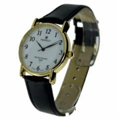 Male laikrodis Watch PERFECT PRF-K16-102