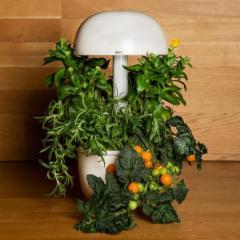 Išmanusis vazonas- daigyklė Plantui Smart Garden 3e Išmanūs vazonai, daigyklės