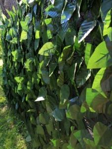 Dirbtinių lapų gyvatvorė EURO FENCE , 1x3m Plastikinės tvoros