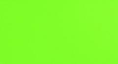 32.7*59.3 S- GREEN RET 1, tile