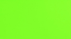 32.7*59.3 S- GREEN RET 1, plytelė