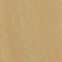 59.8*59.8 ARKESIA BROWN MAT, ak. m. plytelė