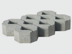 Tracery sidewalk bricks AP1-8 (BM)