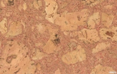 Coating cork wall ICEBERG RAUD 300x600 Cork coating