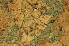 Coating cork wall ICEBERG GREEN 300x600 Cork coating