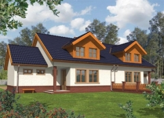 Individual house project 'Melė'