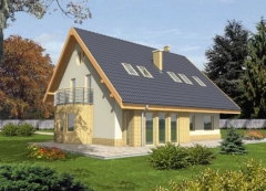 Individual house project 'Polė'