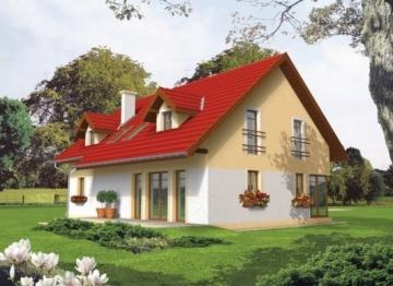 Individualaus namo projektas 'Renaldas'