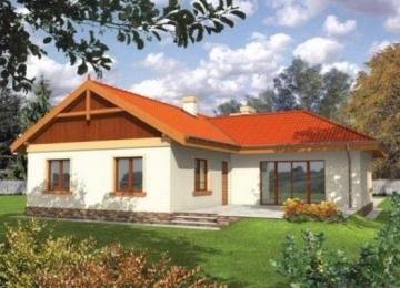 Individualaus namo projektas Žana