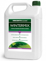 Hardener WINTERMIX 5l Chemical additives for building mixes