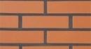Plyta keraminė apdailos Janka 11.101700L Keramikas ķieģeļi
