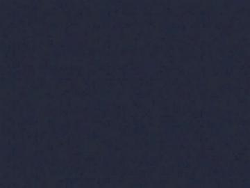 Šiferiui remontiniai dažai 0,5 kg. juodos spalvos