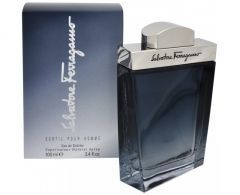 Salvatore Ferragamo Subtil EDT 100ml