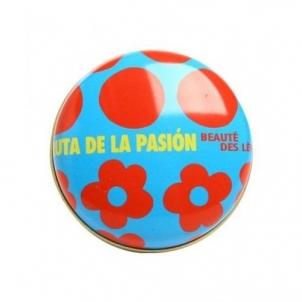 Agatha Ruiz De La Prada Lūpų balzamas- vaisinis, kosmetikos 15ml Blizgesiai lūpoms
