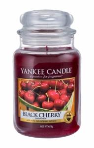 Aromatinė žvakė Yankee Candle Black Cherry Scented Candle 623g Kvapai namams