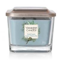 Aromatinė žvakė Yankee Candle Coastal Cypress 347 g