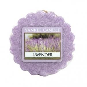Aromatinė žvakė Yankee Candle Fragrant wax in aromalamp Lavender (Lavender) 22 g Kvapai namams