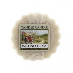 Aromatinė žvakė Yankee Candle Fragrant wax to Wild Sea Grass flavor 22 g Kvapai namams