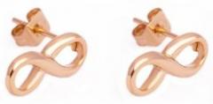 Auskarai Victoria Walls Steel earrings infinity VE1011RG Auskari