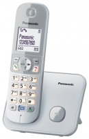 Bevielis telefonas Panasonic KX-TG6811JTS silver Bevieliai telefonai
