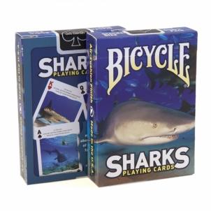 Bicycle Sharks kortos