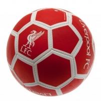 Chelsea F.C. futbolo kamuolys (Baltas su sidabriniais lankais)