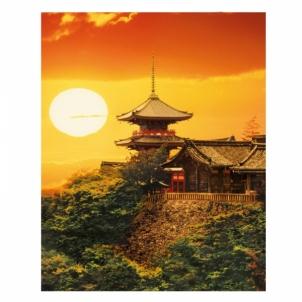 Dėlionė 1000 Kyoto ,Japan