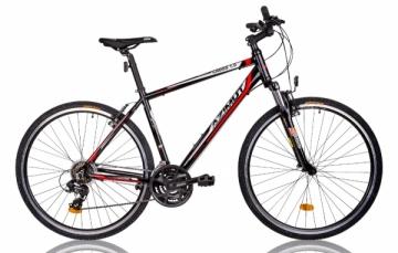 Dviratis AZIMUT Cross 1.0 Man 2016 -19 Hibridiniai (Cross) dviračiai