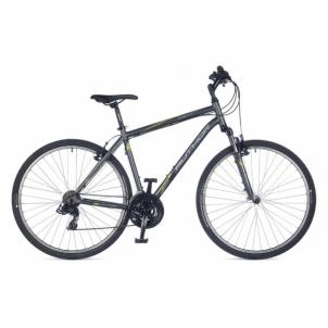 Dviratis Compact Temple Grey matte 22 Hibridiniai (Cross) dviračiai