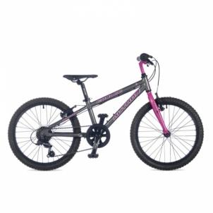 Dviratis Cosmic Ritual Silver // Suzy Pink 20 Paauglių dviračiai