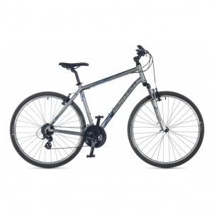 Dviratis Horizon Treasure Silver matte 20 Race / Fitness dviračiai