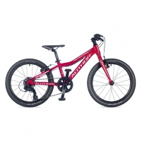 Dviratis Record Author Red // Author Red 20 Bikes for kids