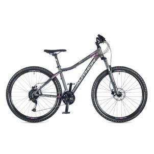 Dviratis Solution ASL Ritual Silver matte 18 Mountain bikes (mtb)