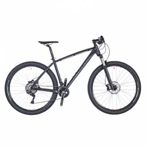 Dviratis Vision 29 Phanom Black matte 21 Mountain bikes (mtb)