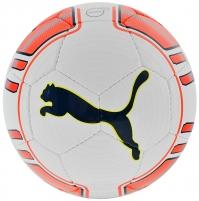 Futbolo kamuolys PUMA EVO POWER LITE 290g 82225 01 Soccer balls