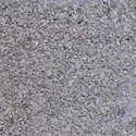 Grindinio trinkelė Mozaika 6-6, pilkos (BRIKERS) Grindinio trinkelės