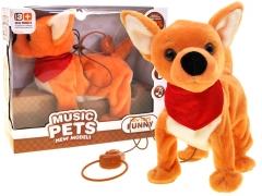 Interaktyvus šuo Interaktyvūs žaislai