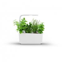 Išmanusis vazonas- daigyklė Tregren Kitchen Garden, T6, White, LED, 345x175x440 mm, 12 seed pods pc(s), Wi-Fi controlled, Smartphone remote support Išmanūs vazonai, daigyklės