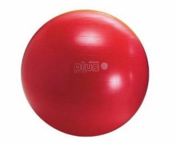 Kamuolys Gymnic Classic Plus 55 raudonas