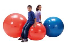 Kamuolys Physio Gymnic 85 cm Exercise balls