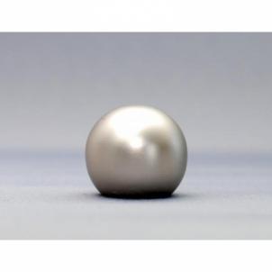 Karnizo užbaigimo detalė KULA 16 mm matinio sidabro