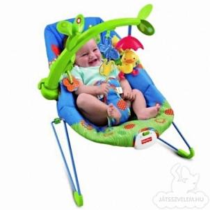 Kėdutė supynė su grojančiu ančiuku Fisher price Hamaca patito musical X3843 Kitos prekės kūdikiams