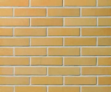 Perforated facing bricks 'Asais Janka' 11.103400L